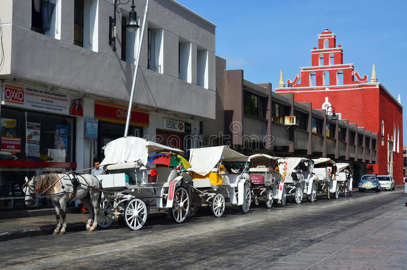 Horse and carriage. Lined up in Merida, Mexico waiting to carry tourists royalty free stock image
