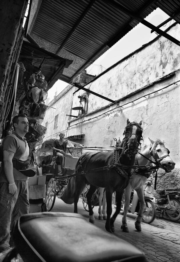 Horse carriage in a Moroccan street royalty free stock photos