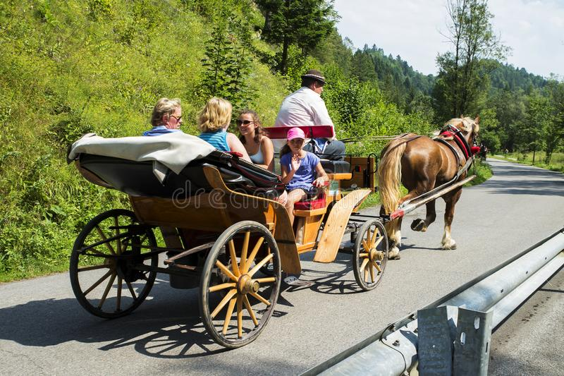 Horse and carriage with pepole on road near river. Dunajec Slovakia. 3/8/2017 stock photos