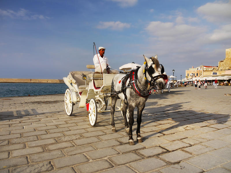 Horse Carriage Ride royalty free stock image
