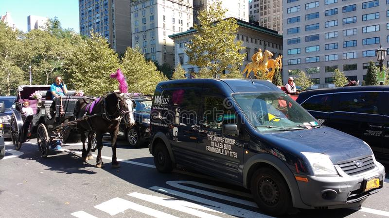 Horse and Carriage Rides Among Traffic, Central Park, NYC, NY, USA royalty free stock images