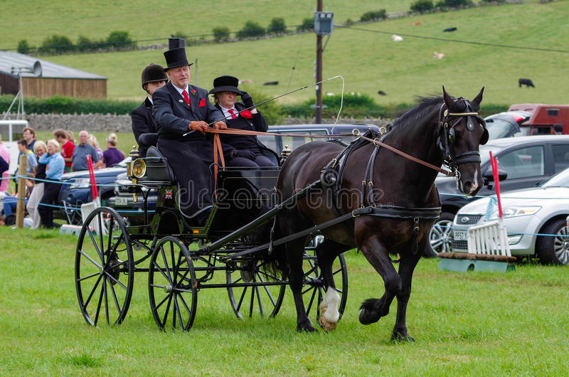 Horse and carriage. A horse and carriage in the ring at the North Lonsdale Agricultural Show stock photo