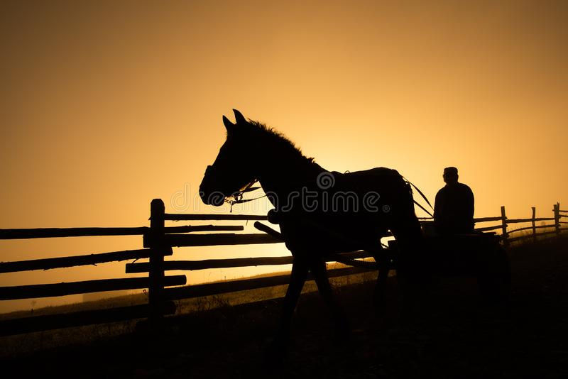 Horse and carriage silhouette in the cold morning in mountain countryside in Romania stock photos