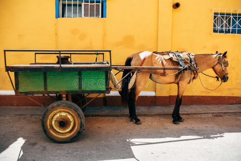 A horse and carriage sits in the shade in Trinidad, Cuba. A horse and carriage sits in the shade for a rest in Trinidad, Cuba royalty free stock photography