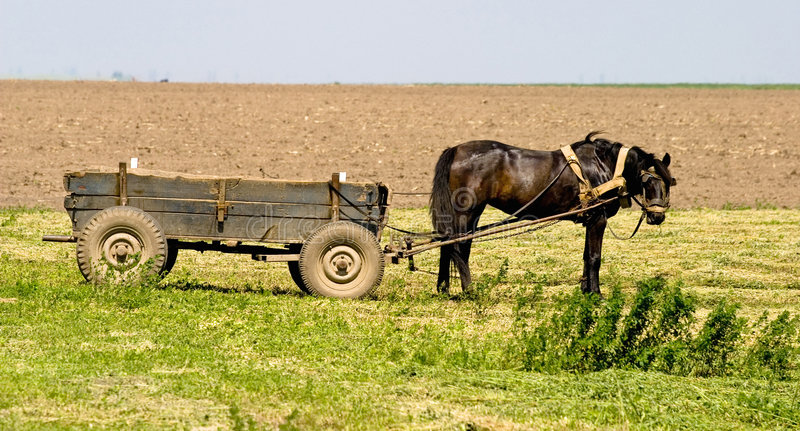 Horse And Cart Royalty Free Stock Images
