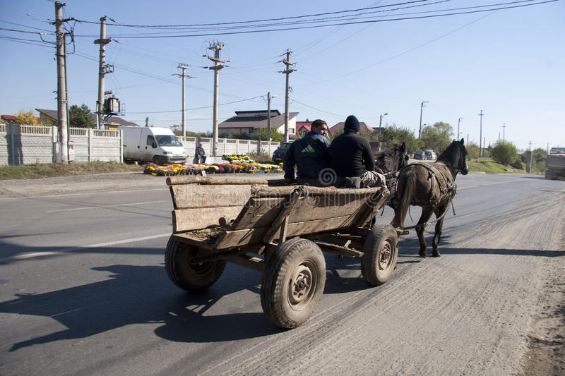 Download Horse cart with gipsy editorial image. Image of farm - 26871590