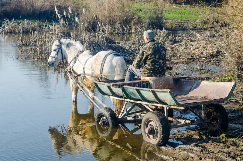 With a horse and cart and a man standing in the river stock photography