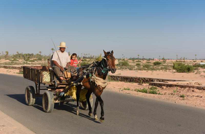 Horse & Cart in Morocco royalty free stock photo