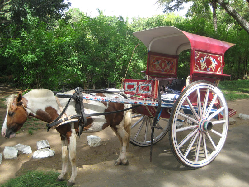 Horse cart at Mysore. I clicked this photo of horse cart opposite of lalitha mahal at Mysore. This horse cart kept as an attraction for tourist who are visiting stock images