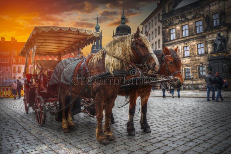 horse cart rides along Dresden. royalty free stock photos