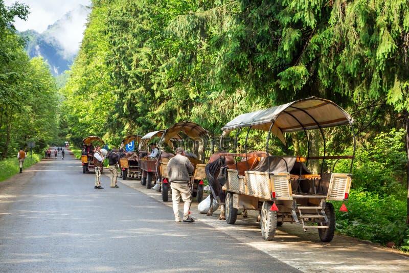 Horse carts in Tatra National Park