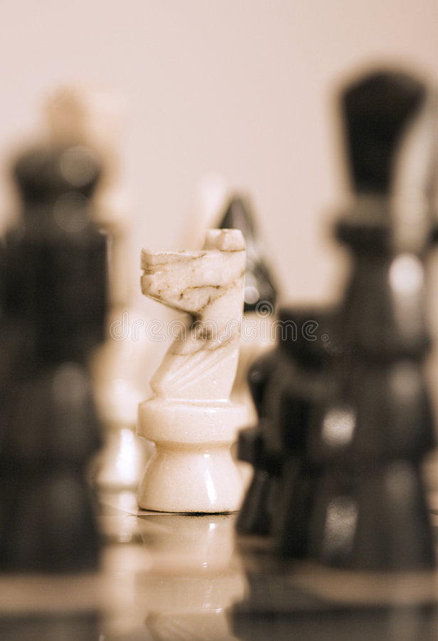 Horse chess royalty free stock images