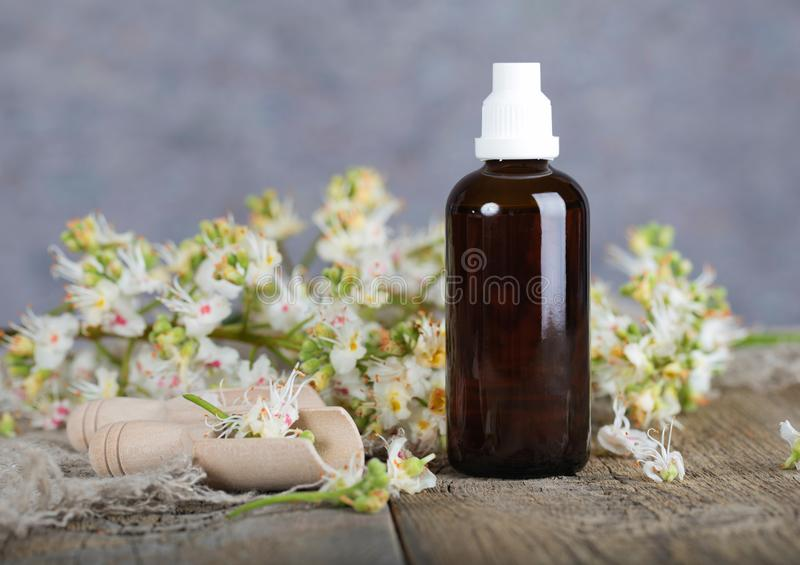 Horse chestnut anti-aging hair toner. Fresh chestnut flowers in the background royalty free stock photo