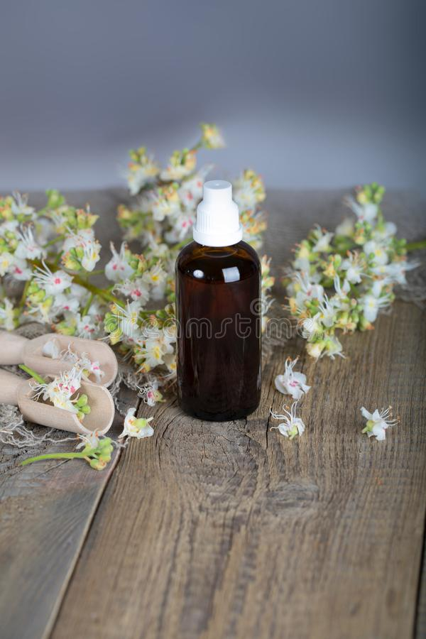 Horse chestnut anti-aging hair toner. Fresh chestnut flowers in the background royalty free stock images