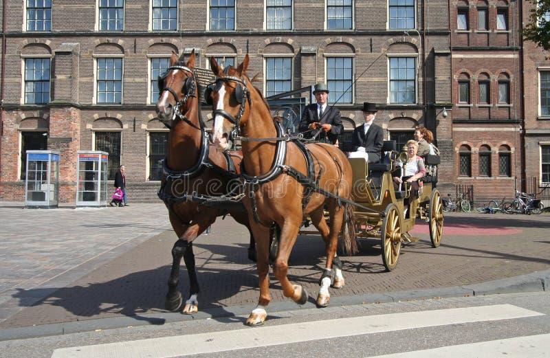 Horse Coach Editorial Stock Image