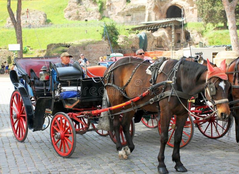 Horse coach n Rome, Italy stock photos
