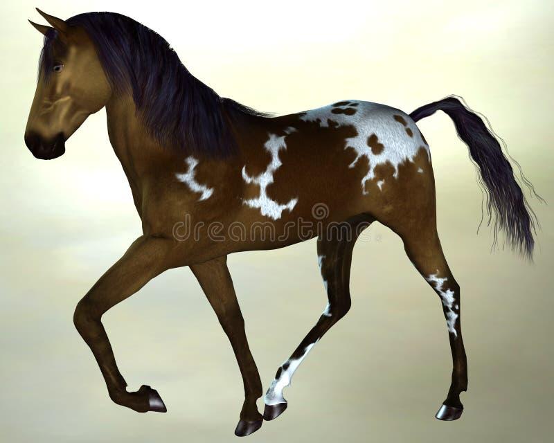 Horse dark brown stock photo