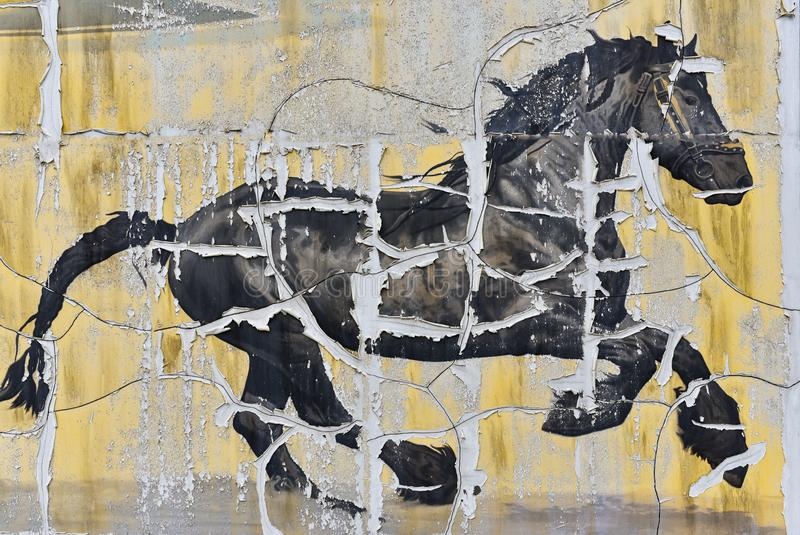 Horse drawing on the old wall, picture, background. Horse drawing on the old wall stock images
