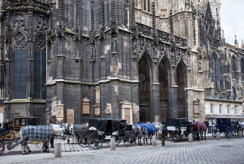 Horse-drawn μεταφορές κοντά στους τοίχους του καθεδρικού ναού του ST Stephen, στοκ εικόνες