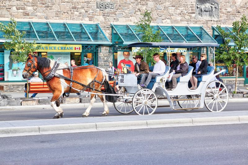 Horse Drawn Carriage Ride in Banff National Park stock photography