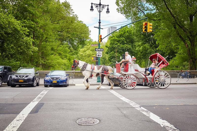 Horse drawn carriage ride by the Central Park. stock image