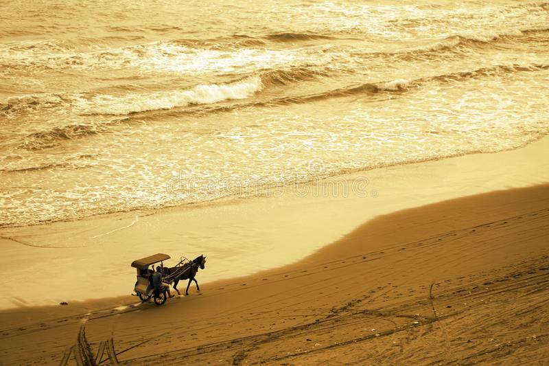 Horse-drawn carriage runs along the shore aerial view royalty free stock images