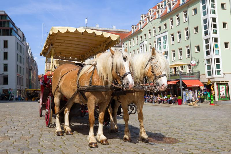 Horse-drawn carriage stands waiting for passengers, Dresden stock images