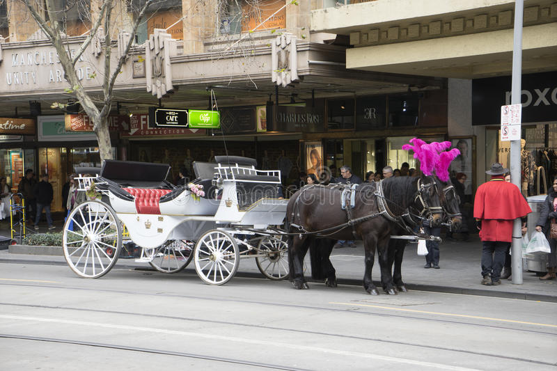 A horse-drawn carriage on the street in Melbourne stock photography