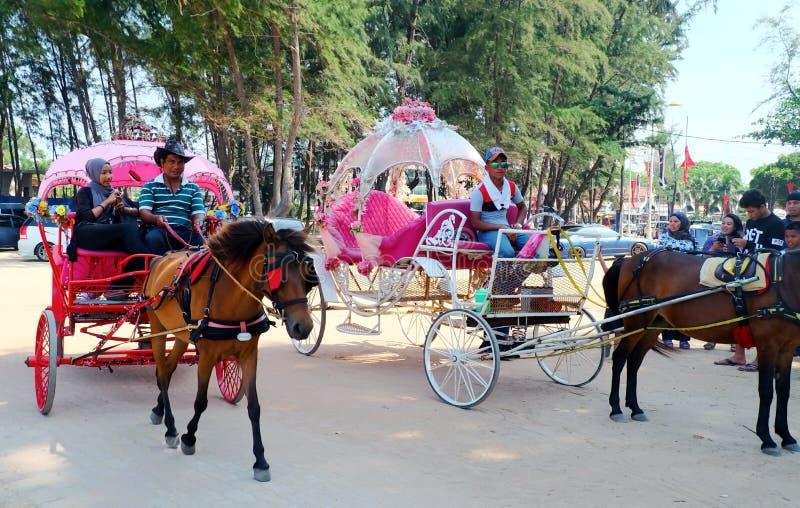 Horse-drawn carriage for tourist at Batu Buruk beach in Kuala Trengganu. Kuala Terengganu, Malaysia - May 1, 2016 : Horse-drawn carriage for tourist at Batu stock photos