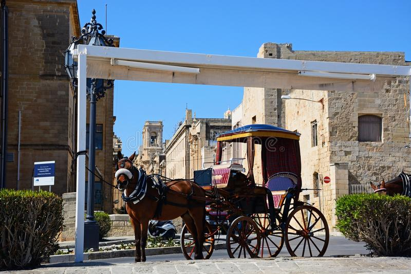 Horse drawn carriage, Valletta. Horse drawn carriage by the Public Registry building, Valletta, Malta, Europe stock photo