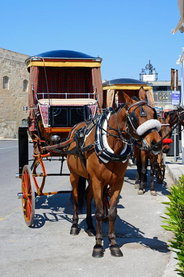 Horse drawn carriage, Valletta. Horse drawn carriage by Public Registry, Valletta, Malta, Europe royalty free stock image
