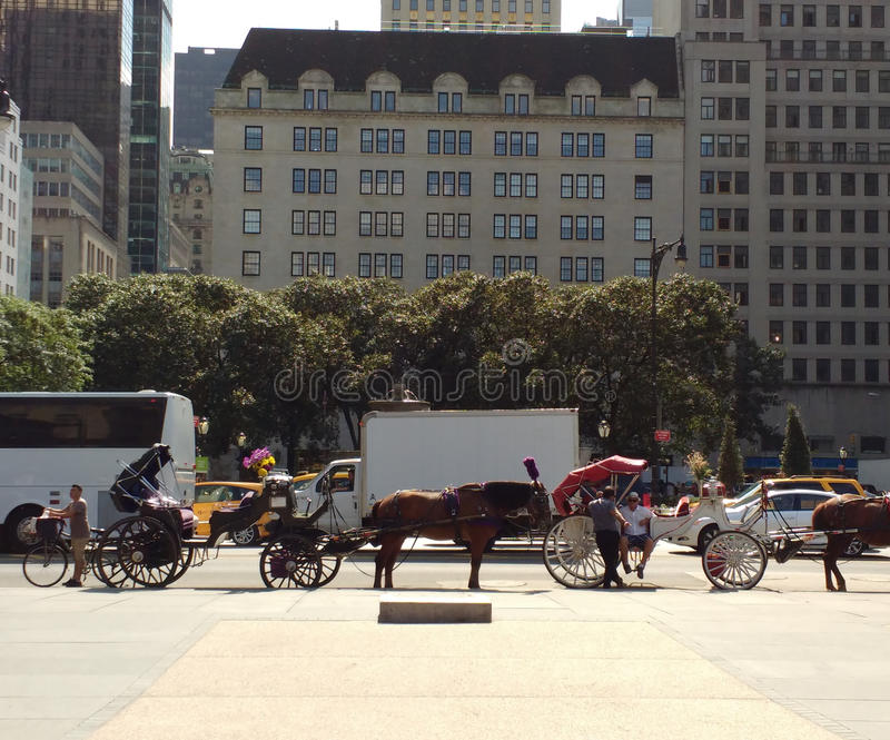Horse-Drawn Carriages, Midtown, Manhattan, NYC, NY, USA stock images