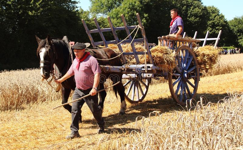 French man and horse and hay wagon royalty free stock images