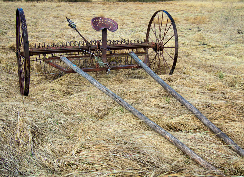 Horse Drawn Rake. Standing in the field royalty free stock photography