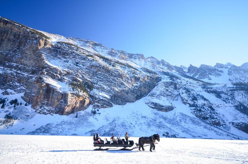 Horse Drawn Sleigh Around Frozen Lake Louise royalty free stock photo