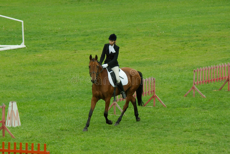 Horse dressage. Horse riding pretty girl on the lawn royalty free stock images