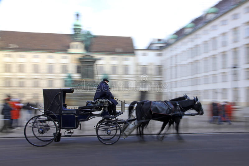 Horse-driven carriage in Vienna royalty free stock image