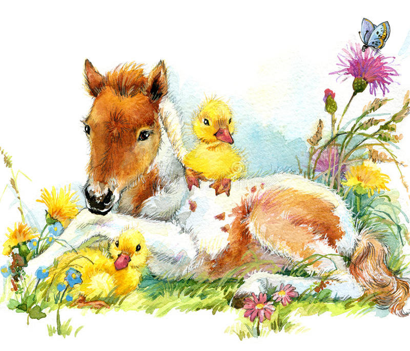 Horse and and ducklings. background with flower. illustration royalty free illustration