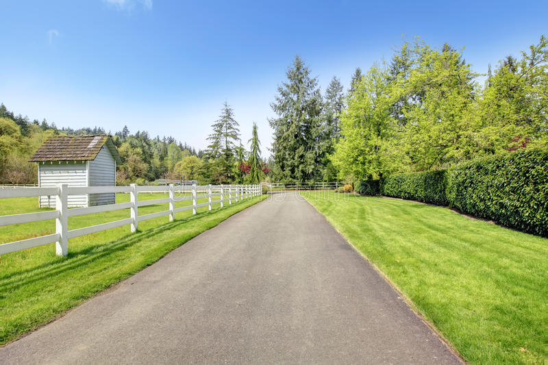 Download Horse farm drive way stock image. Image of trimmed, fence - 37917205