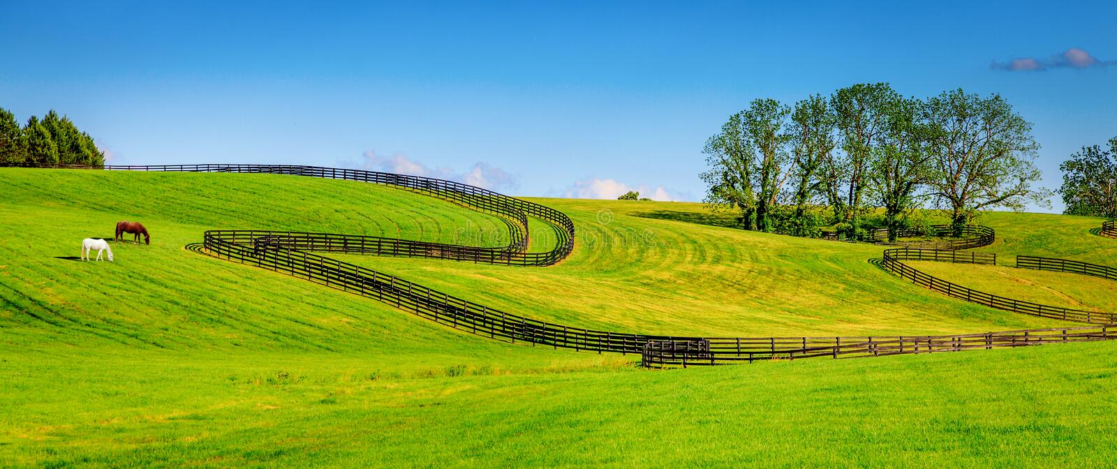 Horse farm fences. Scenic image of a horse farm with black wooden fences stock photography