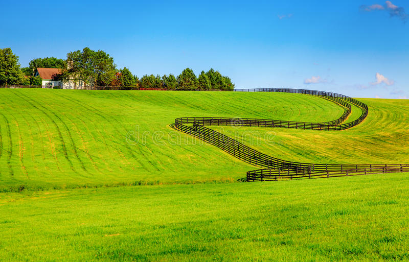 Horse farm fences. Scenic image of a horse farm with black wooden fences royalty free stock photo