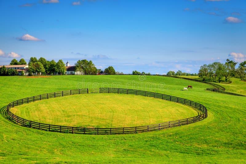 Horse Farm Fences Royalty Free Stock Images