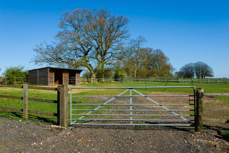 Horse farm. Woden shelter at horse farm. West Midlands, UK stock photo