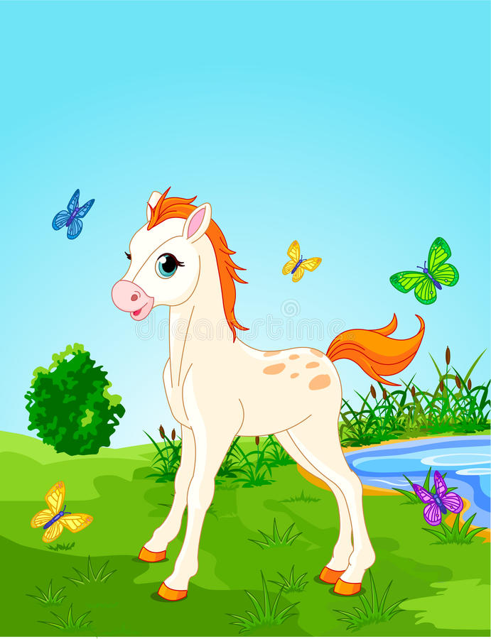 Download Horse foal  in the meadow stock vector. Illustration of illustration - 18650537