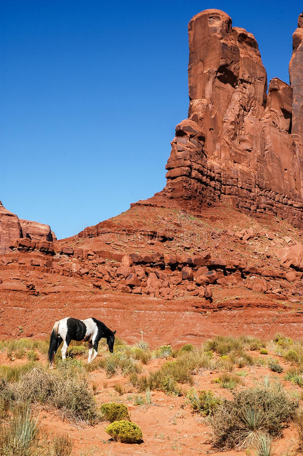 Download A Horse In Front Of A Red Rock Formations, USA Stock Image - Image: 25803435