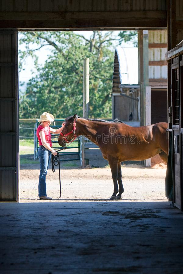 Horse gets pet - vertical royalty free stock photos