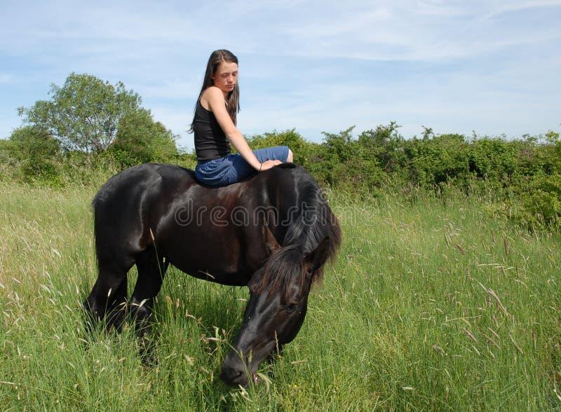 Horse and girl stock photos