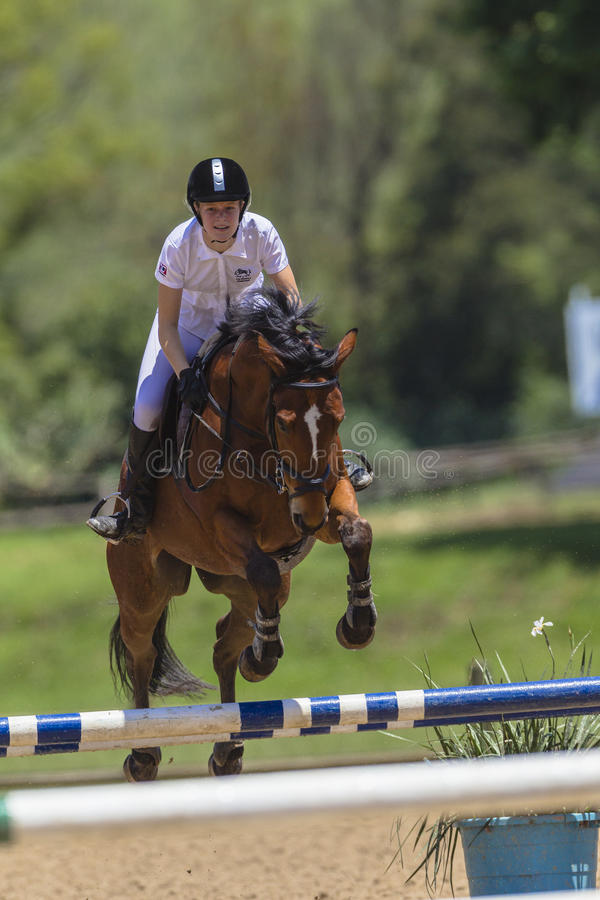 Download Horse Girl Jump Equestrian Editorial Stock Photo - Image: 27656693