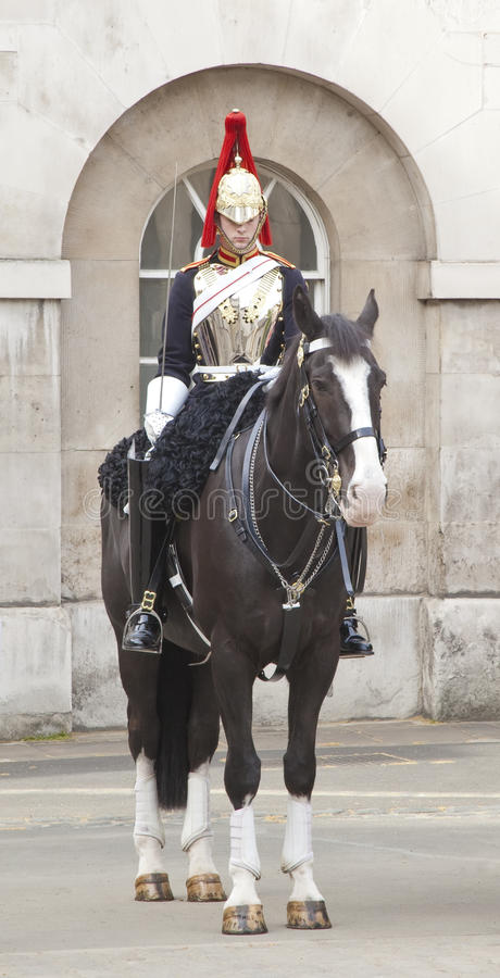 Horse guard stock images