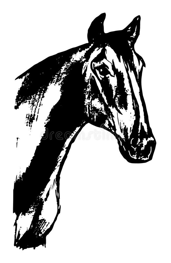 horse head - graphic design stock vector - image: 63189712